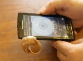 Jak zrobić wzmacniacz do telefonu ze skorupy ślimaka