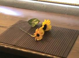 Jak zrobić kwiatka psikającego wodą