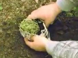 Jak zrobić ekologiczną doniczkę z papieru