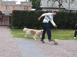 Jak zrobić żart z piłką do kosza