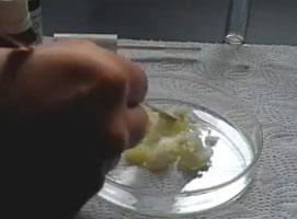Jak zrobić domową odżywkę do rzęs i brwi