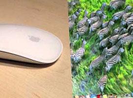 Apple Magic Mouse - Recenzja i przedstawienie funkcji
