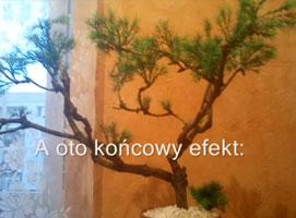Jak zrobić sztuczne drzewko bonsai