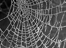 Jak wykonać pajęczynę z papieru