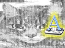 Jak skonwertować zdjęcie na ASCII