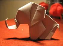 Jak zrobić słonia origami