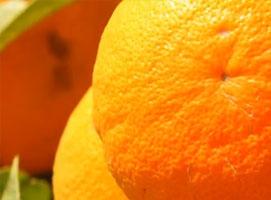 Jak jeść zdrowo - pomarańcze
