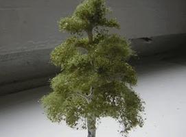 Jak zbudować makietę kolejową - drzewko brzoza