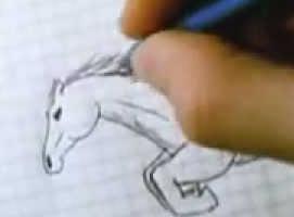 Jak narysować konia - tutorial krok po kroku