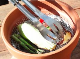 Jak zrobić grilla z doniczki