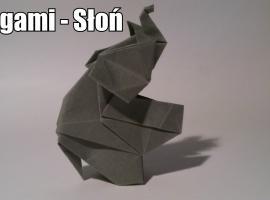 Jak zrobić słonia z origami