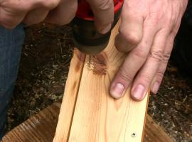 Jak zbudować budkę dla nietoperzy