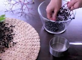Jak zrobić sok z czarnego bzu
