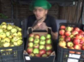 Jak przygotować sok jabłkowy do przepisu na wino