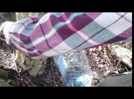 Jak ściągnąć sok z brzozy