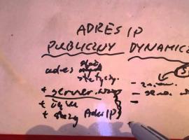 Jak korzystać z adresu IP publicznego statycznego i dynamicznego