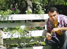 Jak zrobić ogródek wertykalny z palety