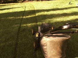 Jak często kosić trawnik