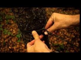 Jak rozwiesić płachtę biwakową - przydatne węzły