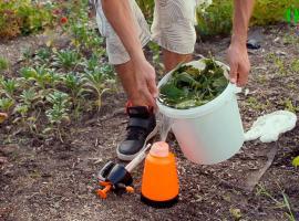 Jak zrobić kompost z pokrzywy