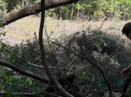 Jak zrobić schronienie w lesie