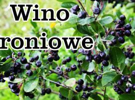 Jak zrobić wino aroniowe