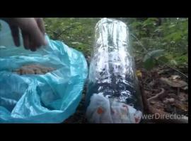 Jak zrobić podstawowy filtr do uzdatniania wody
