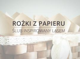 Jak zrobić dekorację na wesele - rożki z papieru