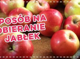 Jak obierać jabłka - sposób z wkrętarką