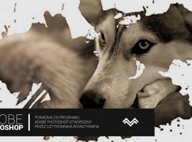 Jak zrobić zdjęcie w pędzlu - Adobe Photoshop