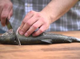 Jak filetować i jak wybrać dobrą rybę