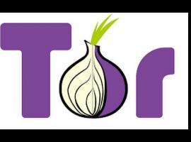 Jak zainstalować Tor Browser - Cebulowe Poradniki #1