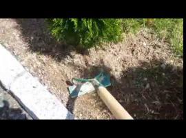 Jak zagospodarować ogród - żwirek przy drzewkach