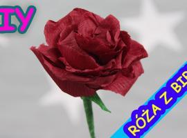 Jak zrobić różę z bibuły - pomysł na dekorację i prezent