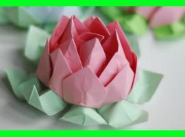 Jak zrobić kwiat lotosu z papieru