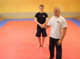 Jak opanować sztukę karate - pozycje #1