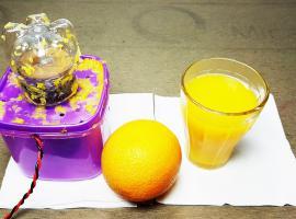 Jak zbudować prostą wyciskarkę do owoców
