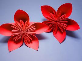Jak tworzyć dekoracje z papieru - kwiaty dekoracyjne