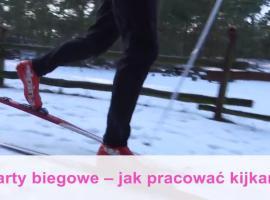 Jak zacząć bieganie na nartach - praca kijkami