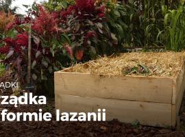Jak ulepszyć swój ogród - grządki w formie lazanii
