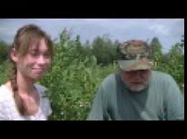 Jak wykorzystać borówkę słowiańską - właściwości zdrowotne