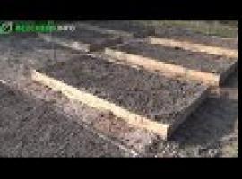 Jak zbudować ogródek warzywny - podwyższone grządki