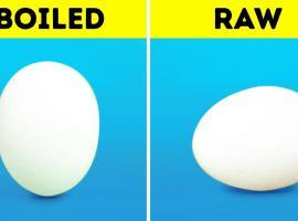 Jak wykorzystać jajka by zaoszczędzić czas i pieniądze