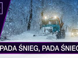 Jak stworzyć śnieg w programie After Effects - poradnik