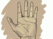 Jak narysować dłoń sposób 1